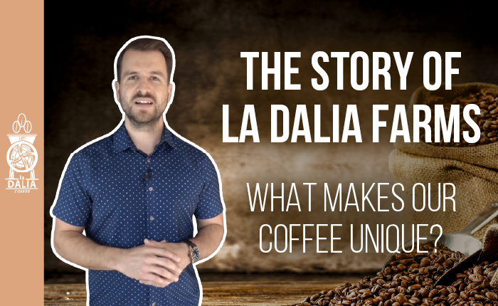 What Makes Our Coffee So Unique? - The Story of La Dalia Farms